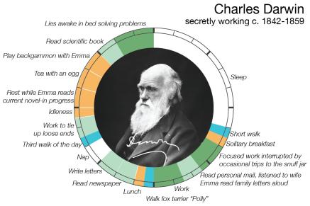 Diagrama de la rutina de trabajo de Darwin